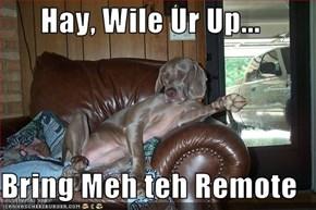 Hay, Wile Ur Up...  Bring Meh teh Remote