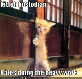 Kitteh kustodian  Hates doing the heavy work