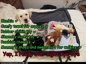Blankie Comfy towel for nappiez Rubber chikin toy Skweeky ducky toy Rawhide chewiez Mommy's shoez and sweatshirt for walkiez