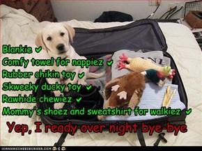Blankie Comfy towel for nappiez Rubber chikin toy Skweeky ducky toy Rawhide chewiez Mommy's shoez and sweatshirt for walkiez