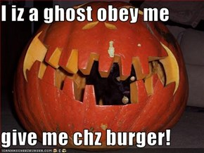 I iz a ghost obey me  give me chz burger!