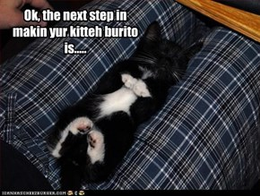 Ok, the next step in makin yur kitteh burito is.....