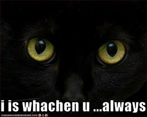 i is whachen u ...always