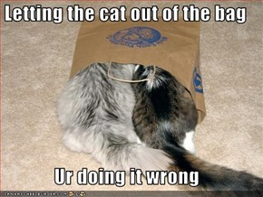 Letting the cat out of the bag  Ur doing it wrong