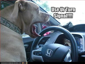 Use Ur Turn Signal!!!!