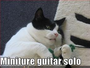 Miniture guitar solo