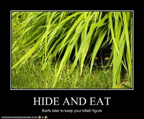 HIDE AND EAT