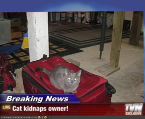 Breaking News - Cat kidnaps owner!
