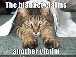 The blanket claims   another victim