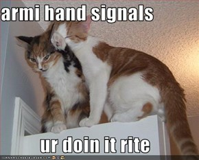armi hand signals  ur doin it rite