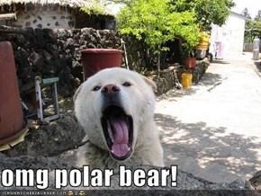 omg polar bear!