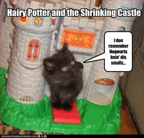 Hairy Potter and the Shrinking Castle
