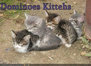Dominoes Kittehs