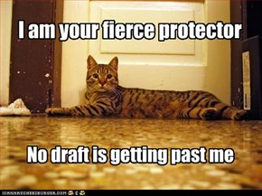 I am your fierce protector