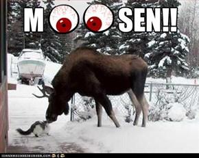 M  O    O  SEN!!