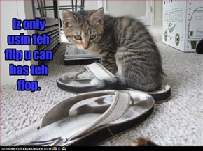 Iz only usin teh flip u can has teh flop.
