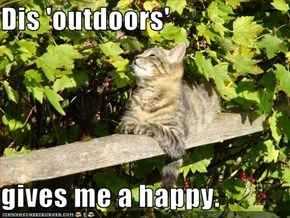 Dis 'outdoors'   gives me a happy.