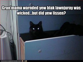 Gran'mama warnded yew blak lawnjuray was wicked...but did yew lissen?