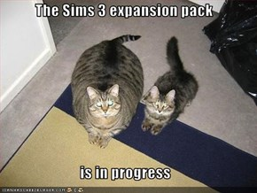 The Sims 3 expansion pack   is in progress