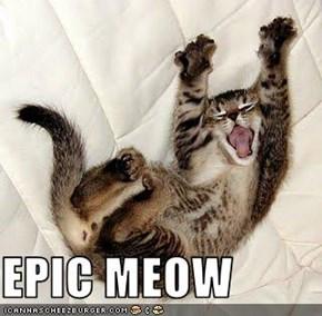 EPIC MEOW