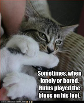 Sometimes, when lonely or bored, Rufus played the blues on his foot.