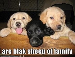 i are blak sheep of family