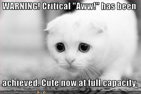 "WARNING! Critical ""Aww!"" has been   achieved. Cute now at full capacity."