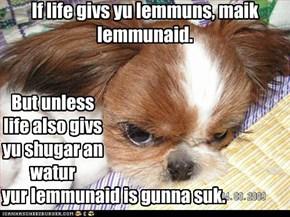 If life givs yu lemmuns, maik lemmunaid.