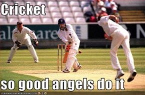 Cricket  so good angels do it