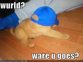 wurld?  ware u goes?