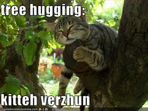 tree hugging:  kitteh verzhun