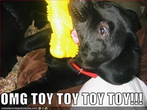 OMG TOY TOY TOY TOY!!!