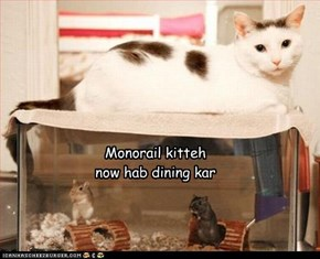 Monorail kitteh now hab dining kar