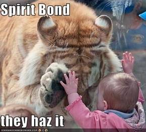 Spirit Bond  they haz it