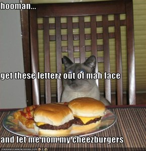 hooman... get these letterz out of mah face and let me nom my cheezburgers