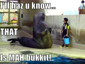 I'll haz u know... THAT Is MAH bukkit!