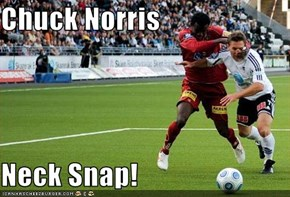 Chuck Norris  Neck Snap!