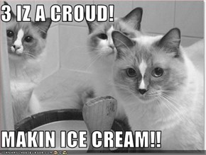 3 IZ A CROUD!  MAKIN ICE CREAM!!