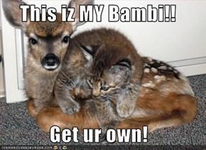 This iz MY Bambi!!  Get ur own!