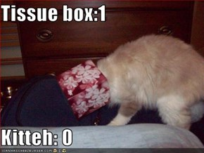 Tissue box:1  Kitteh: 0