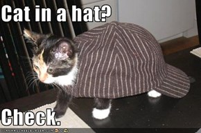 Cat in a hat?  Check.