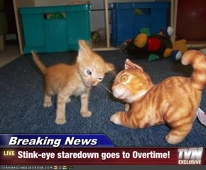 Breaking News - Stink-eye staredown goes to Overtime!