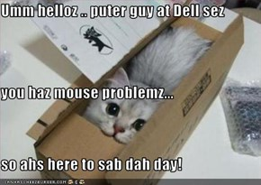 Umm helloz .. puter guy at Dell sez you haz mouse problemz... so ahs here to sab dah day!
