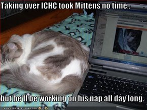 Taking over ICHC took Mittens no time..  but he'll be working on his nap all day long.