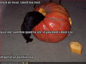 trick or treat, smell me feet, give me sumthin good to ate, if you dont i dont car ill pul of ur pumkin tup