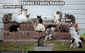 Bubba's Family Reunion