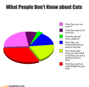 What People Don't Know about Cats