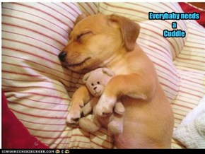 Everybaby needs a  Cuddle