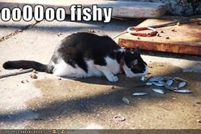 ooOOoo fishy