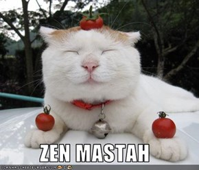 ZEN MASTAH